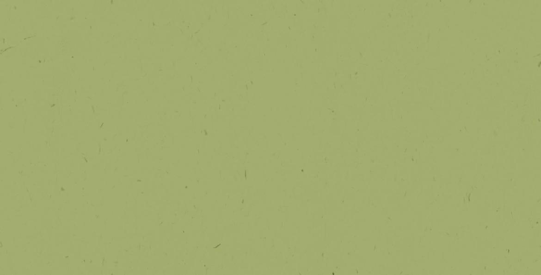 bg_green-scaled.jpg